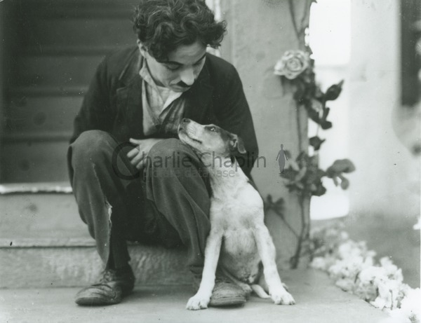 Chaplin and Mutt the dog (also known as Scraps) on the set of A Dog's Life (1918)